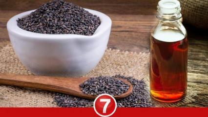 Aç karnına çörek otu yağı içmek zayıflatır mı? Çörek otu yağı saça faydaları nelerdir?