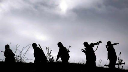 Kandil'e yazılan örgüt raporları ele geçirildi: PKK'nın yazışma dili Türkçe
