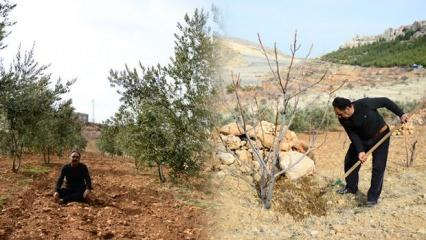 36 yıl kamyon şoförlüğü yaptı, huzuru köyüne yerleşip yüzlerce ağaç dikmekte buldu!