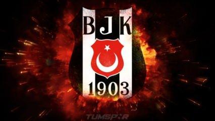"""Beşiktaş'tan açıklama! """"Bu karar yok hükmündedir!"""""""