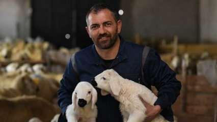 7 yıldır yaptığı sözleşmeli öğretmenliği bırakarak, hayvancılık yapmaya başladı!