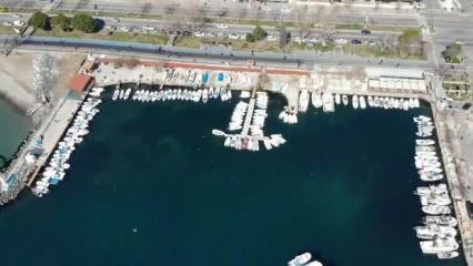 Marmara Denizi'nde 2 aydır süren salya tehlikesi!