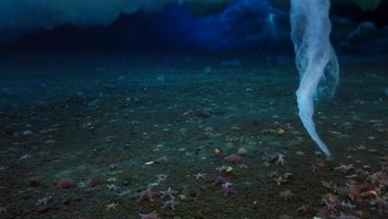 Ölüm parmağı olarak bilinen doğa olayı ilk kez tam kayda alındı!