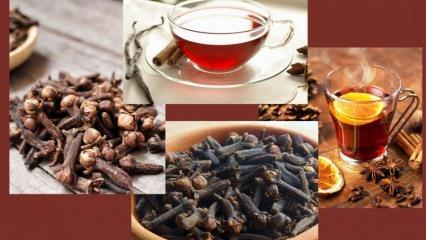 Karanfil çayının faydaları nelerdir? Karanfil çayı nasıl yapılır?