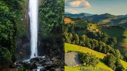 Surinam nerede ve nüfusu ne kadar? Surinam hakkında bilinmesi gerekenler