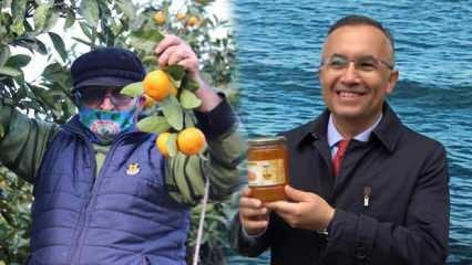 Vali Çeber: Rize'nin mandalinası çayından daha eski!