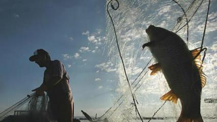 Balıkçılık av sezonu yasağı bu gece başlıyor