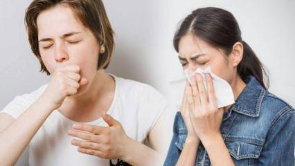 Astım semptomları beslenmeyle azaltılabilir