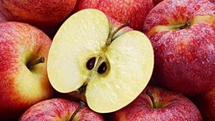 Fazla tüketildiğinde ölüme yol açan yiyecekler nelerdir? Elma çekirdeğini yutarsanız...