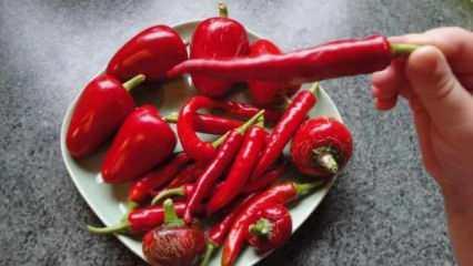 Uzmanlardan uyarı! Tüketimi hastalığa neden olan besinler