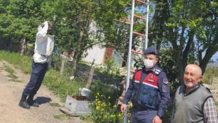 78 yaşında arıcılık yapan vatandaşa jandarma yardım etti!