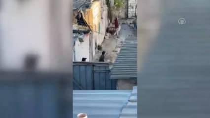 Silahlanan Yahudi işgalciler Kudüs'te Filistinlilere ateş açtı