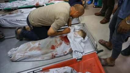 Filistin kahreden haberi duyurdu! ABD'den pişkin açıklama, Türkiye'den tepki