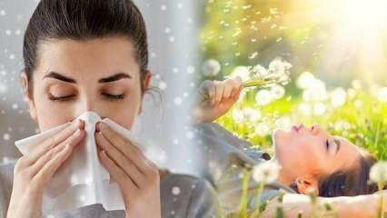 Alerjik hastalıklar son 20 yılda 3 kat artış gösterdi!