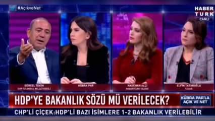 CHP'lilerden peş peşe itiraf geliyor! HDP'ye neden bakanlık verilmesin?