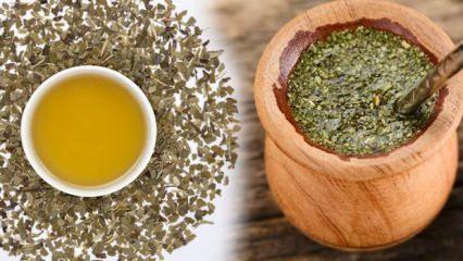 Mate çayı ne işe yarar? Mate çayı zayıflatır mı?