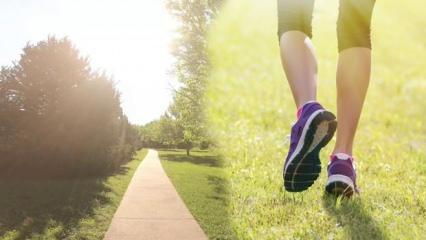 30 dakika yürüyüş yapmak kaç kalori yakar? Her gün düzenli yürüyüş yapmak zayıflatır mı?