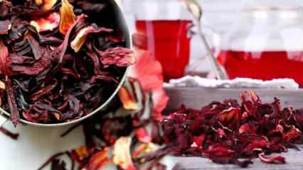 Hibiskus çayı nasıl demlenir? Hibiskus çayı faydaları nelerdir?