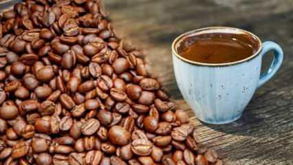 Menengiç kahvesi faydaları nelerdir? Sütlü menengiç kahvesi nasıl yapılır?
