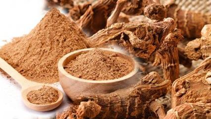 Udi hindi tozu faydaları nelerdir? Udi hindi yağı nasıl kullanılır?