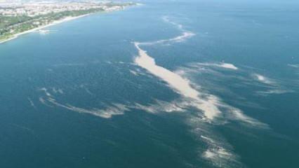 Müsilaj Marmara açıklarında ada oluşturdu! Endişelendiren manzara