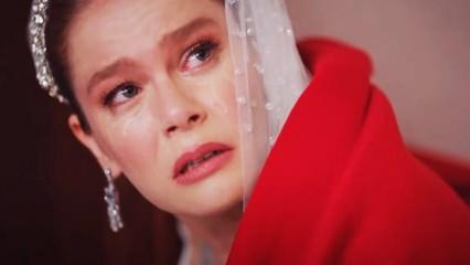 Camdaki Kız 10.bölüm fragmanı Sırtını dayayacakken hüsrana uğruyor! Bıçak kesiği gibi acıttı...