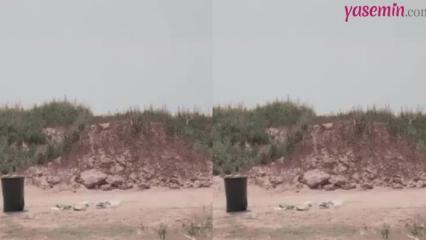 Çöpünüzü atarken doğayı kurtarmak bu kadar basit!