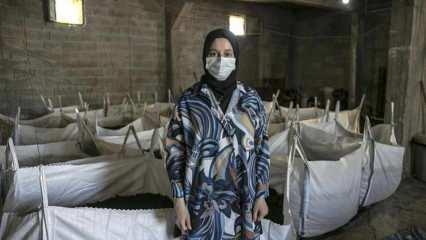 Evinin bodrumunda beslediği solucanlardan yıllık 12 ton gübre üretiyor