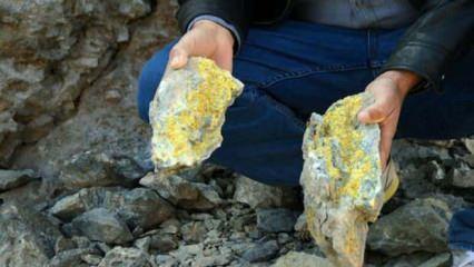 Türkiye'de bulunan dev hazinenin ardından 100 tonluk hedef!
