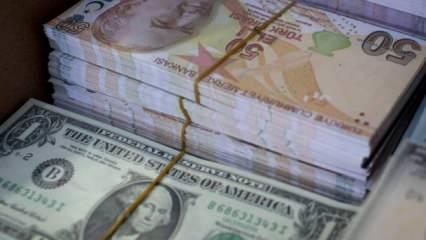 Türkiye'ye tehditler savuran Fitch'ten büyüme ve dolar açıklaması!