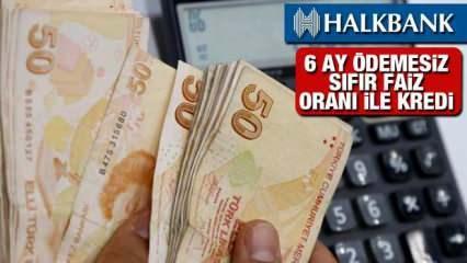 Halkbank Sıfır Faiz 6 Ay Ödemesiz 225 Bin TL'ye Kadar Kredi Fırsatı! Kredi Başvuru Detayları...