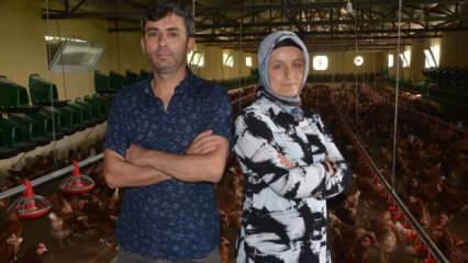 Ordu'da anasınıfı öğretmeni organik yumurta üretiyor, Dubai ve Almanya'ya ihraç ediyor!
