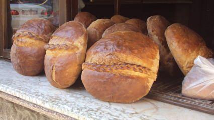 Orjinal Vakfıkebir ekmeği nasıl yapılır? En kolay Vakfıkebir ekmeği tarifi