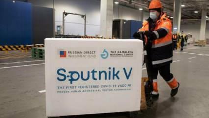 Son dakika haberi: Rus aşısı Sputnik V Türkiye'de