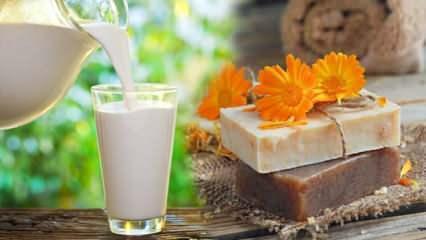 Keçi sütü sabunu ne işe yarar? Keçi sütü sabunu faydaları ve zararları nelerdir?