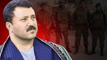 Babür Farahmand: Türk bayrağını ve Türk askerini ülkemizde görmek istiyoruz