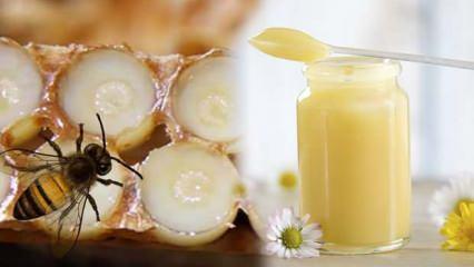 Arı sütünün faydaları nelerdir? Arı sütünün cilde faydaları...