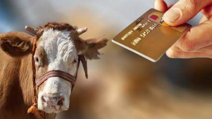 Diyanet kurban satışıyla ilgili merak edilen kredi kartı sorusunu yanıtladı