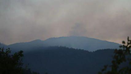 Mersin ve Hatay'daki ormanlar 3 gündür yanıyor