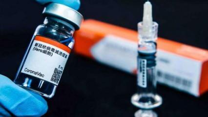 Türkiye'nin aşı raporu yayımlandı