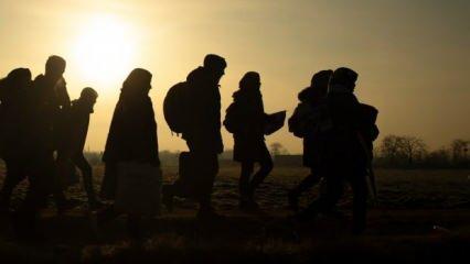 Jandarma ekipleri geçit vermedi! Van'da 73 düzensiz göçmen yakalandı