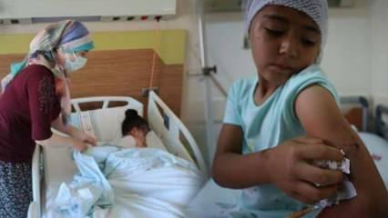 Balıkesir'de 8 yaşındaki çocuğa pitbull saldırdı