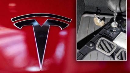Tesla kullanıcıları şokta! Binlerce dolarlık hasar