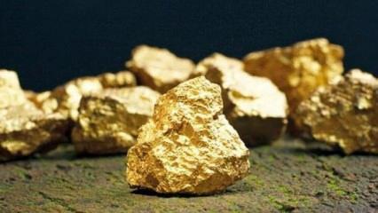 Altın fiyatları için kritik viraj! Altında korkulan olacak mı? ABD mesajı verdi