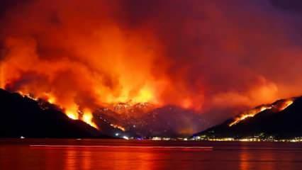 Orman yangınları neden çıktı? Kahreden ihtimal