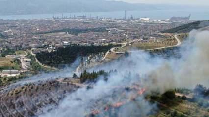 Son dakika... İstanbul dahil toplam 36 ilde ormana giriş yasağı