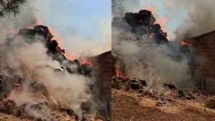 Mersin'de felaketin önüne geçildi!