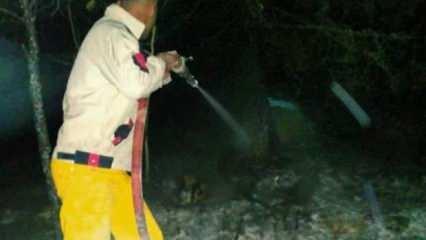 Orman Genel Müdürlüğü'nden Samsun açıklaması