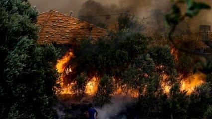 Orman yangını çıkarmak için gelen PYD/PKK'lı 2 terörist yakalandı