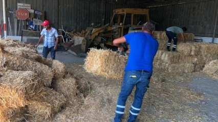Yangında zarar gören çiftçilere yardım eli